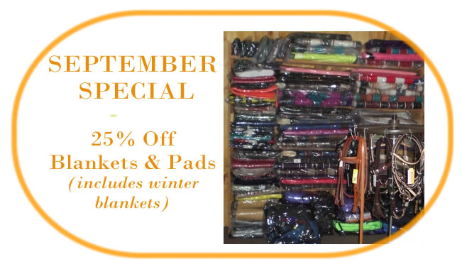 September Special: 25% off Blankets and Pads (including winter blankets)